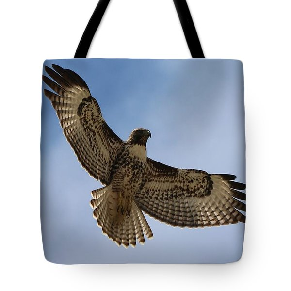 Hawk In Flight  Tote Bag