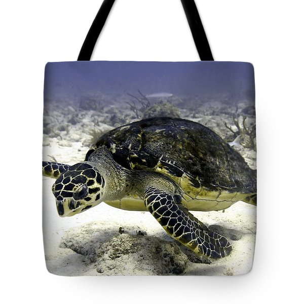 Hawksbill Caribbean Sea Turtle Tote Bag