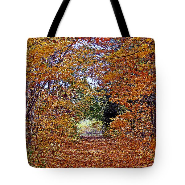 Hawthorn Hollow Tote Bag by Kay Novy