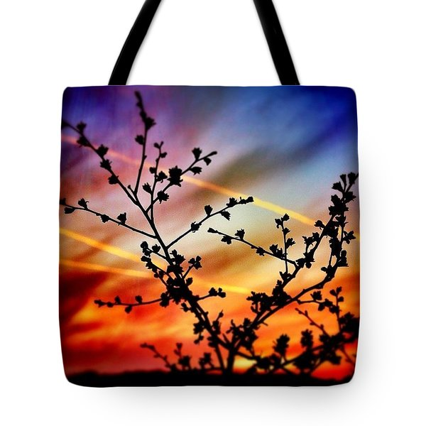 Hawthorn Sunset Tote Bag