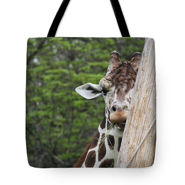 Tote Bag featuring the photograph Hay Not Just For Horses by Judy Whitton