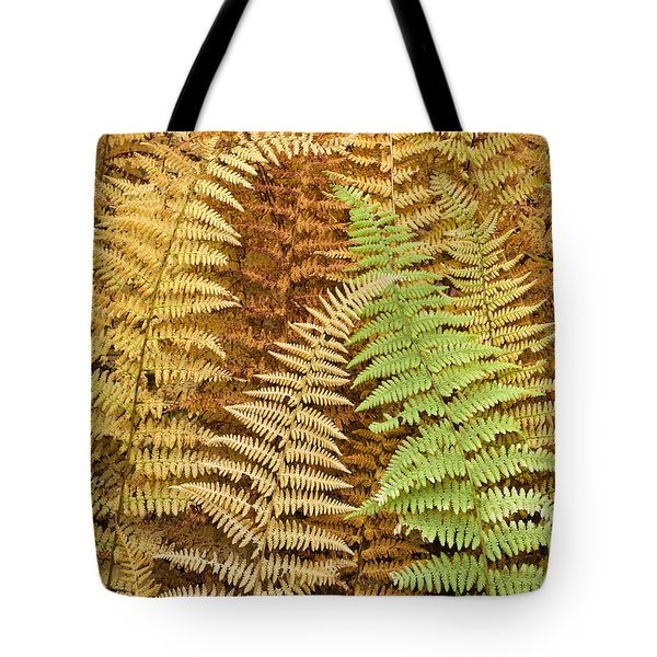 Hay-scented Ferns Tote Bag by Alan L Graham
