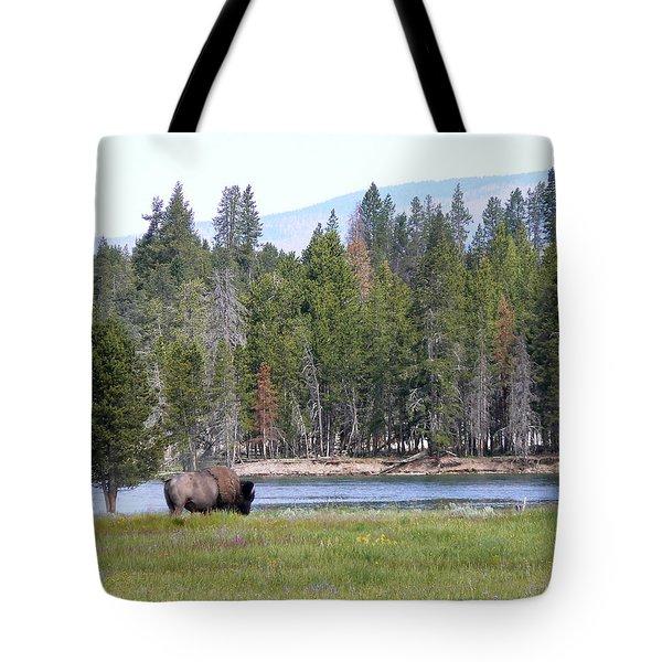 Hayden Valley Bison Tote Bag