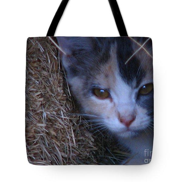 Haystack Cat Tote Bag