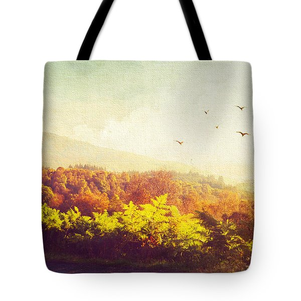 Hazy Morning In Trossachs National Park. Scotland Tote Bag by Jenny Rainbow