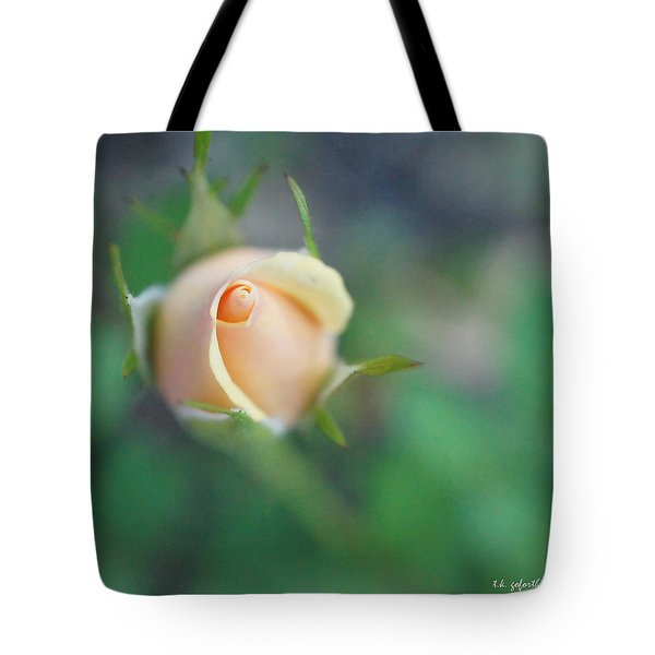 Tote Bag featuring the photograph Hazy Rosebud Squared by TK Goforth