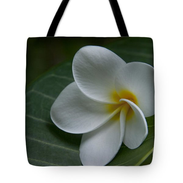 He Aloha No O Waianapanapa - White Tropical Plumeria - Maui Hawaii Tote Bag by Sharon Mau