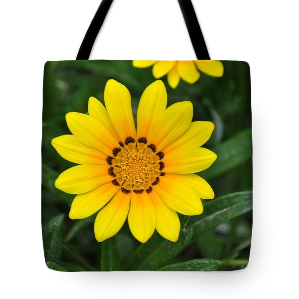 Tote Bag featuring the photograph He Loves Me  He Loves Me Not by Lew Davis