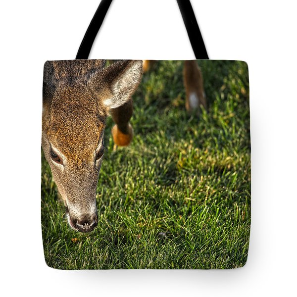 Head First Tote Bag by Karol Livote