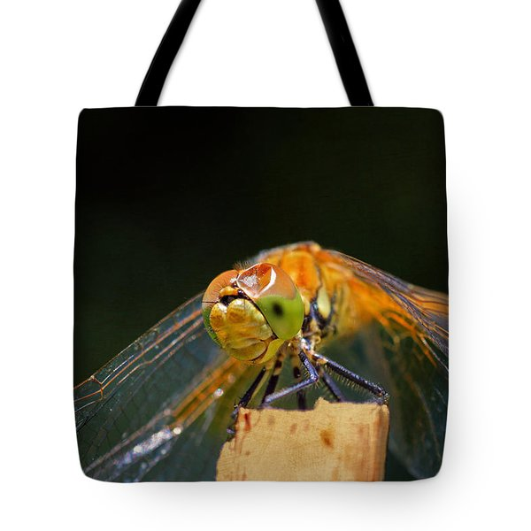 Head On Collision? Tote Bag by Donna Kennedy