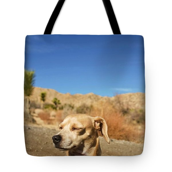Tote Bag featuring the photograph Headache by Angela J Wright