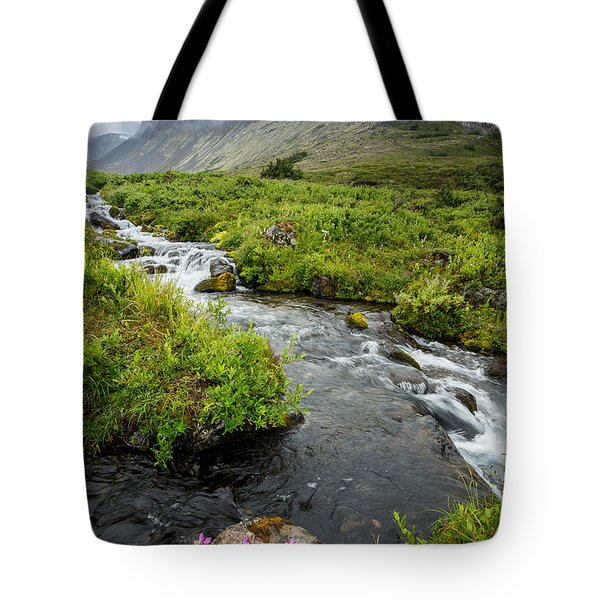 Headwaters In Summer Tote Bag