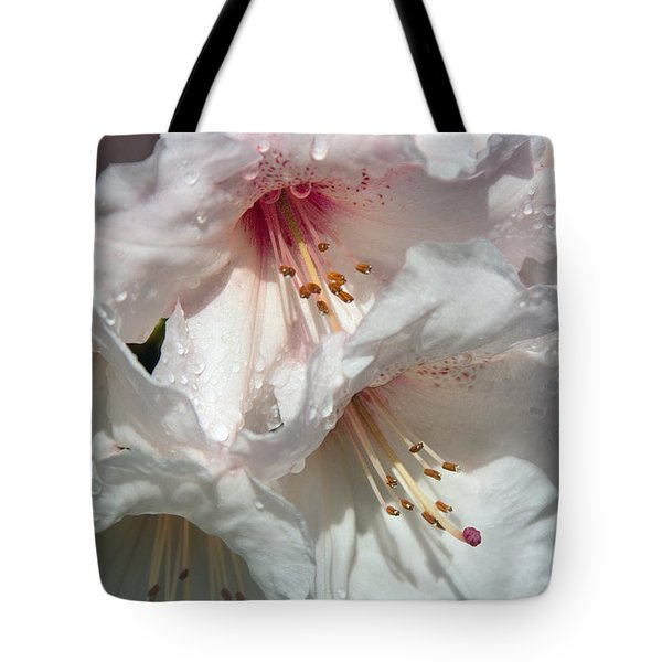 Tote Bag featuring the photograph Healing Power by Jean OKeeffe Macro Abundance Art