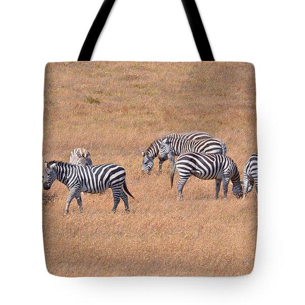 Hearst Castle Zebras Tote Bag by Lynn Bauer