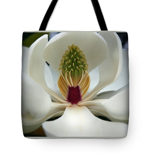 Heart Of The Magnolia Tote Bag by Andy Lawless
