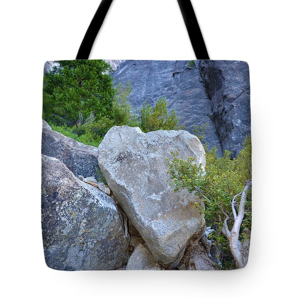 Heart Rock In Yosemite Tote Bag by Debra Thompson