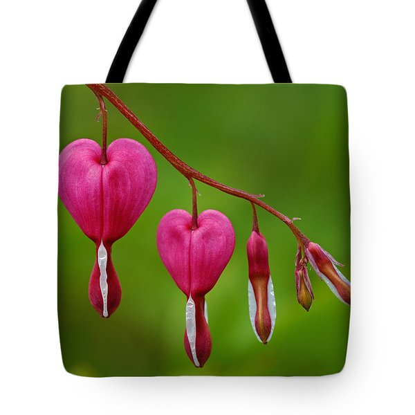 Heart String Tote Bag