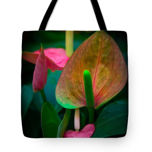 Hearts Of Joy Tote Bag by Karen Wiles