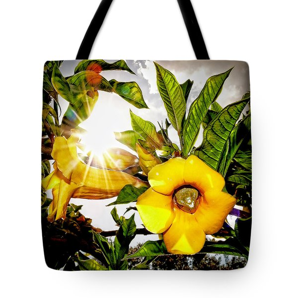 Heat Of The Day Tote Bag by Stuart Harrison