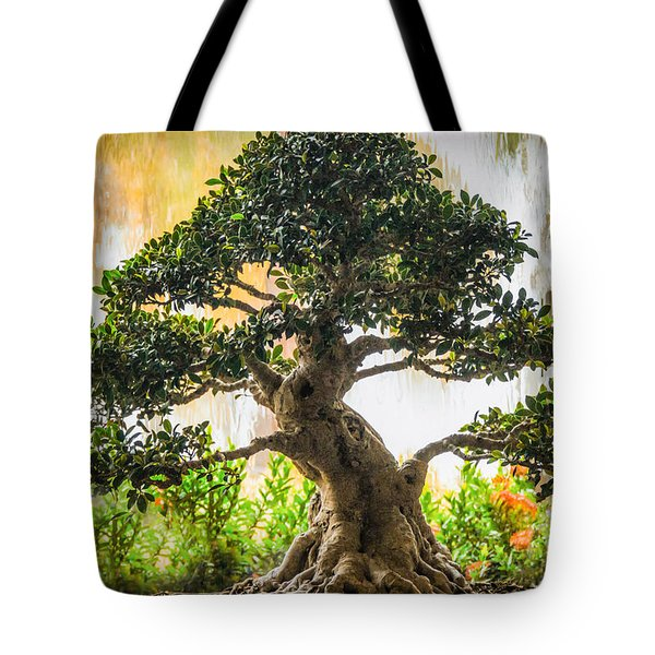 Tote Bag featuring the photograph Heaven And Earth by Mary Lou Chmura