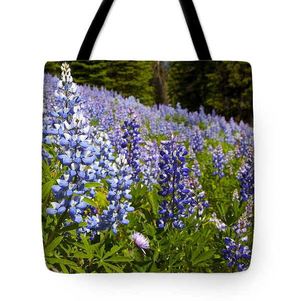Heavenly Blue Lupins Tote Bag by Theresa Tahara