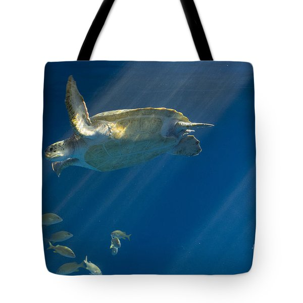 Heavenly Turtle Tote Bag