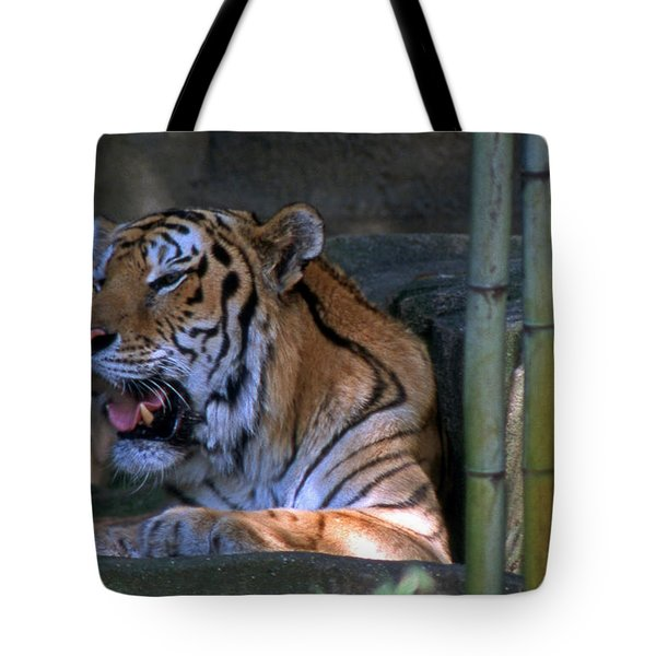 Heavy Breathing Tote Bag by Skip Willits