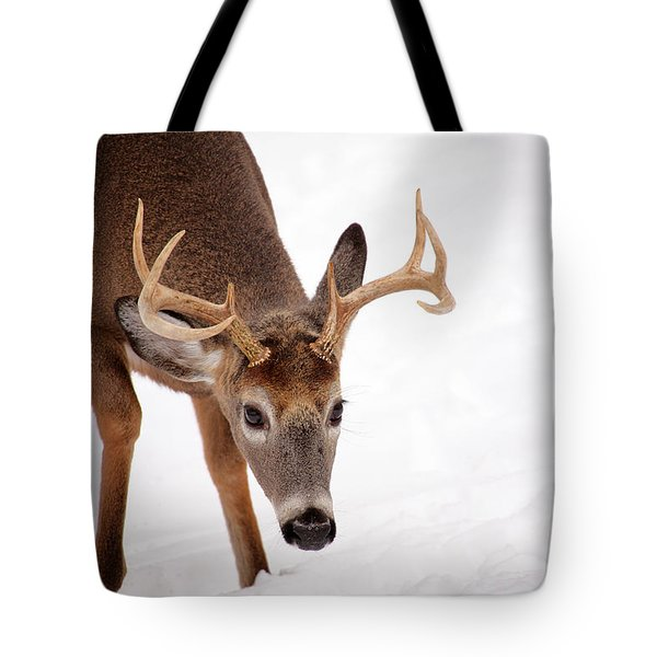 Heavy Rack Tote Bag by Karol Livote