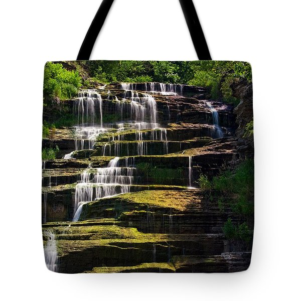 Hector Falls Tote Bag by Dave Files