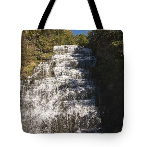 Hector Falls Tote Bag by William Norton