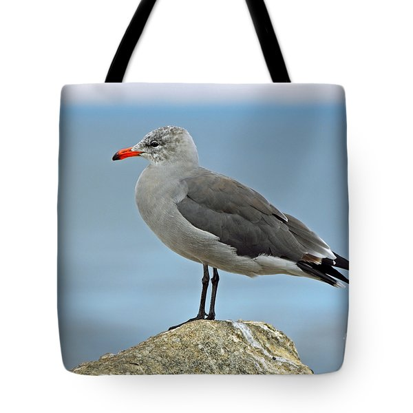 Tote Bag featuring the photograph Heermann's Gull In Profile by Susan Wiedmann