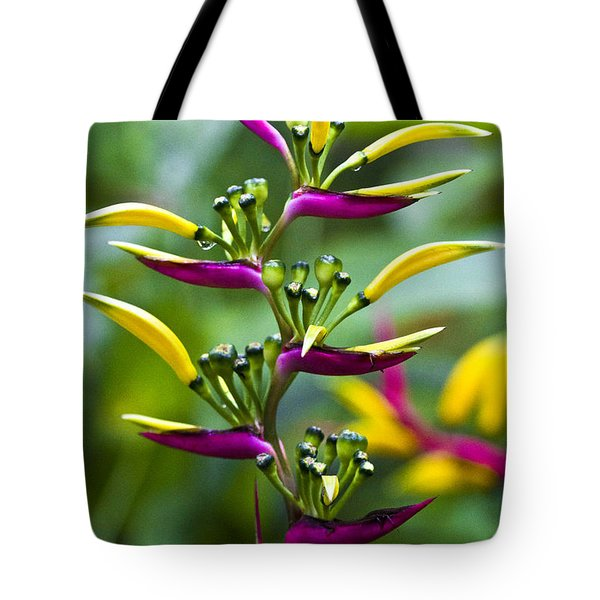 Heliconia Subulata II Tote Bag