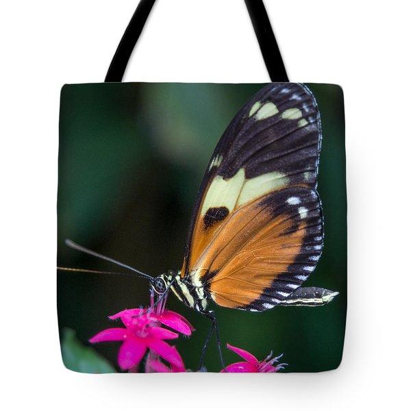 Heliconius Ismenius Tote Bag