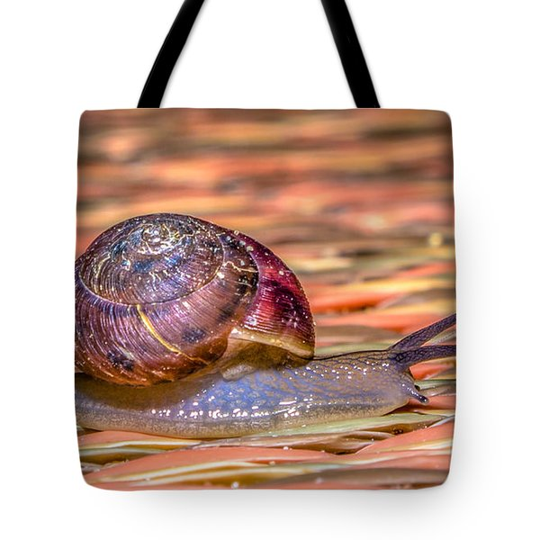 Tote Bag featuring the photograph Helix Aspersa by Rob Sellers