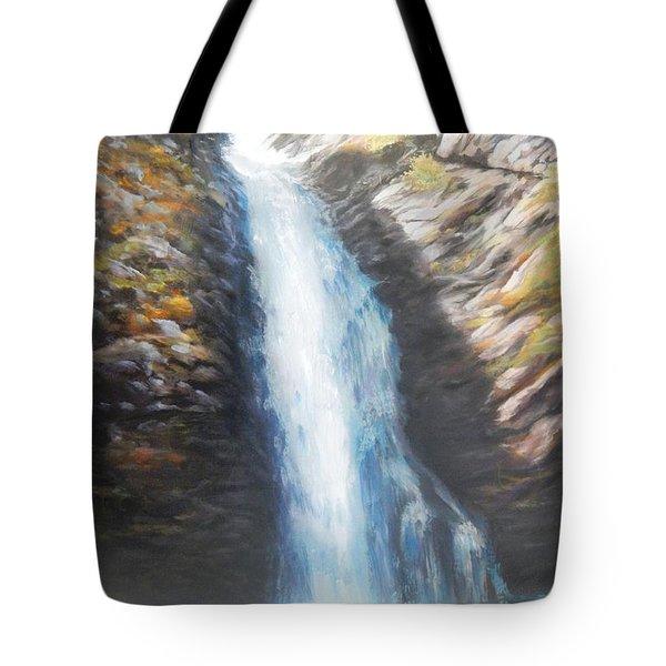Hell Roaring Falls Tote Bag by Patti Gordon