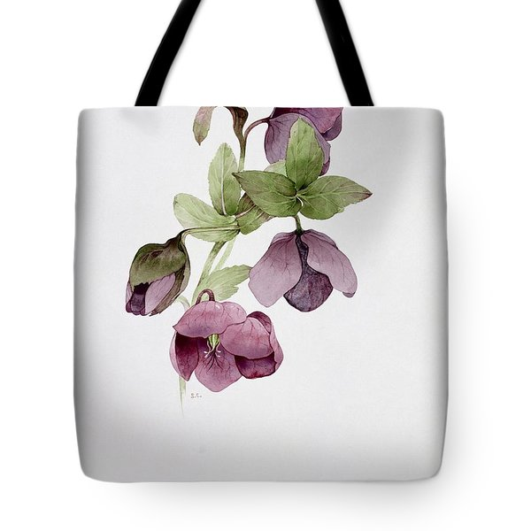 Helleborus Atrorubens Tote Bag by Sarah Creswell