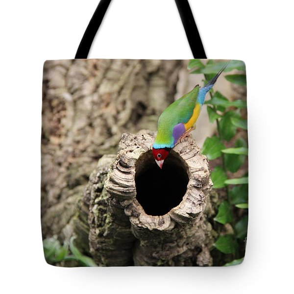 Hello... Anybody Home. Tote Bag