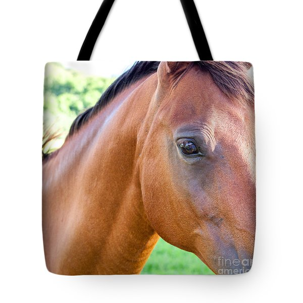Tote Bag featuring the photograph Hello Beauty by Roselynne Broussard