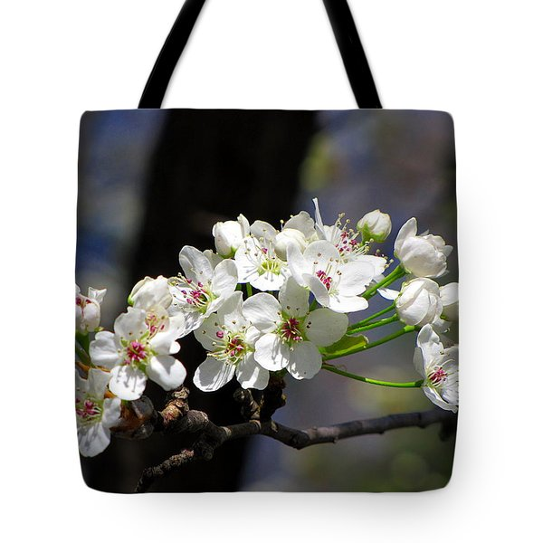 Tote Bag featuring the photograph Hello Spring by Greg Simmons