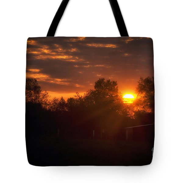 Hello Sunshine Tote Bag by Thomas Woolworth