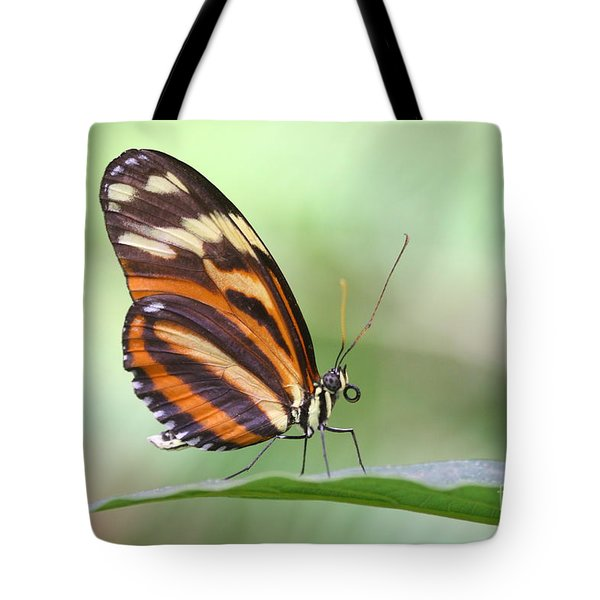 Tote Bag featuring the photograph Hello There Long Wing by Ruth Jolly