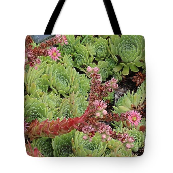 Hen And Chick In Bloom Tote Bag