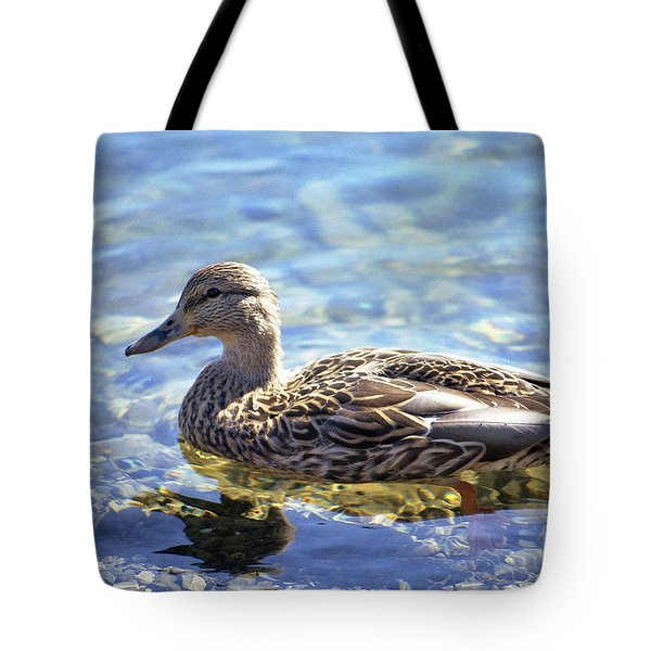 Hen's Reflection Tote Bag