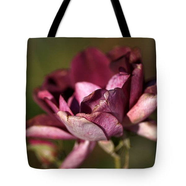 Her Beauty Of Age Tote Bag by Joy Watson