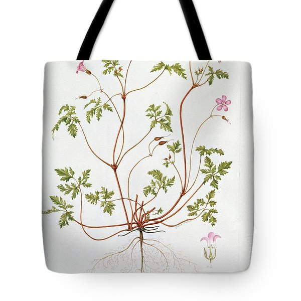 Herb Robert Tote Bag by Diana Everett