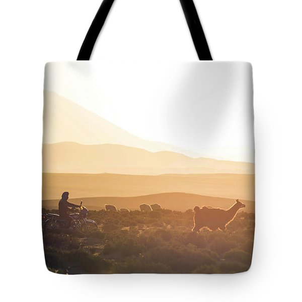 Herd Of Llamas Lama Glama In A Desert Tote Bag by Panoramic Images