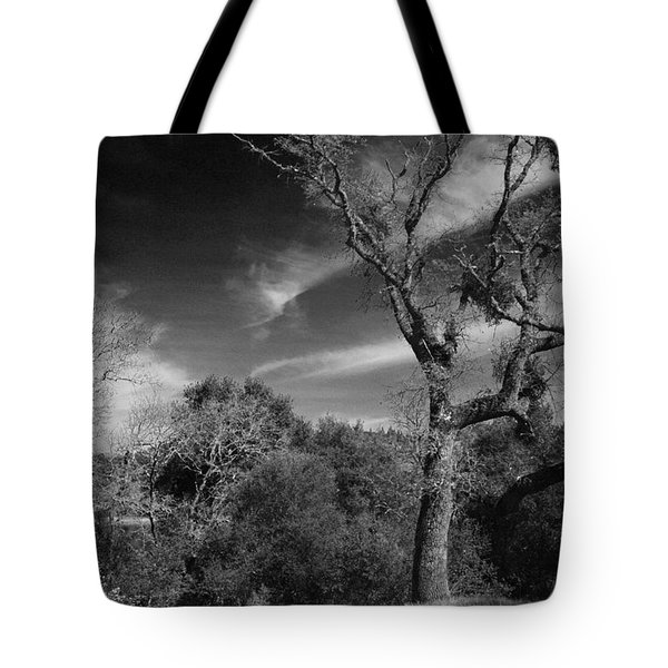 Here As I Stand Tote Bag by Laurie Search