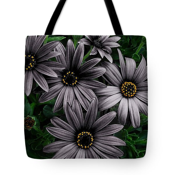 Here Comes The Night  Tote Bag by Steve Taylor
