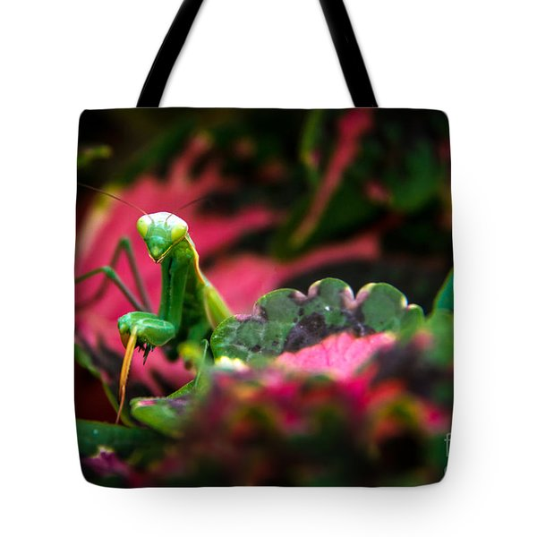 Here I Am Tote Bag by Robert Bales