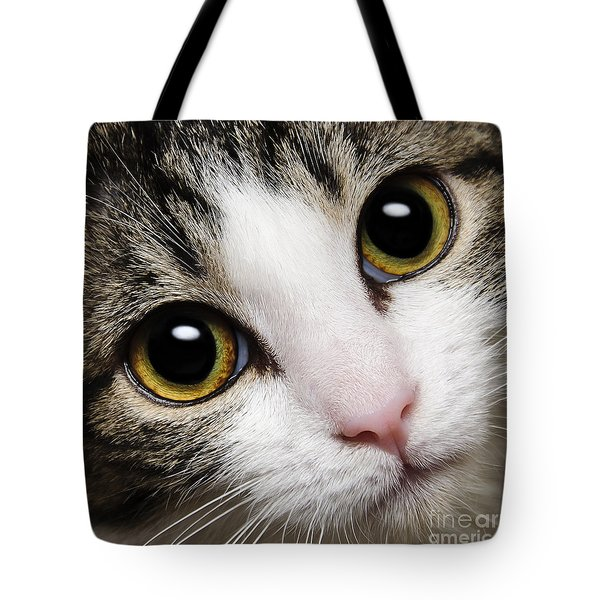 Here Kitty Kitty Close Up Tote Bag